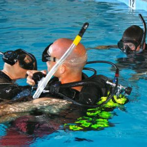 RESCUE DIVER (E-LEARNING BASIS)