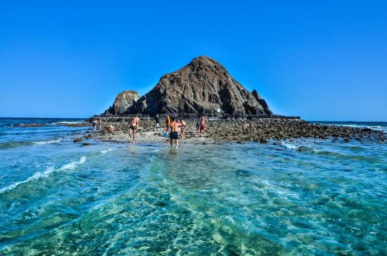 3 Boat Ride With Snorkeling Fujairah Dive Trips extremesports.ae
